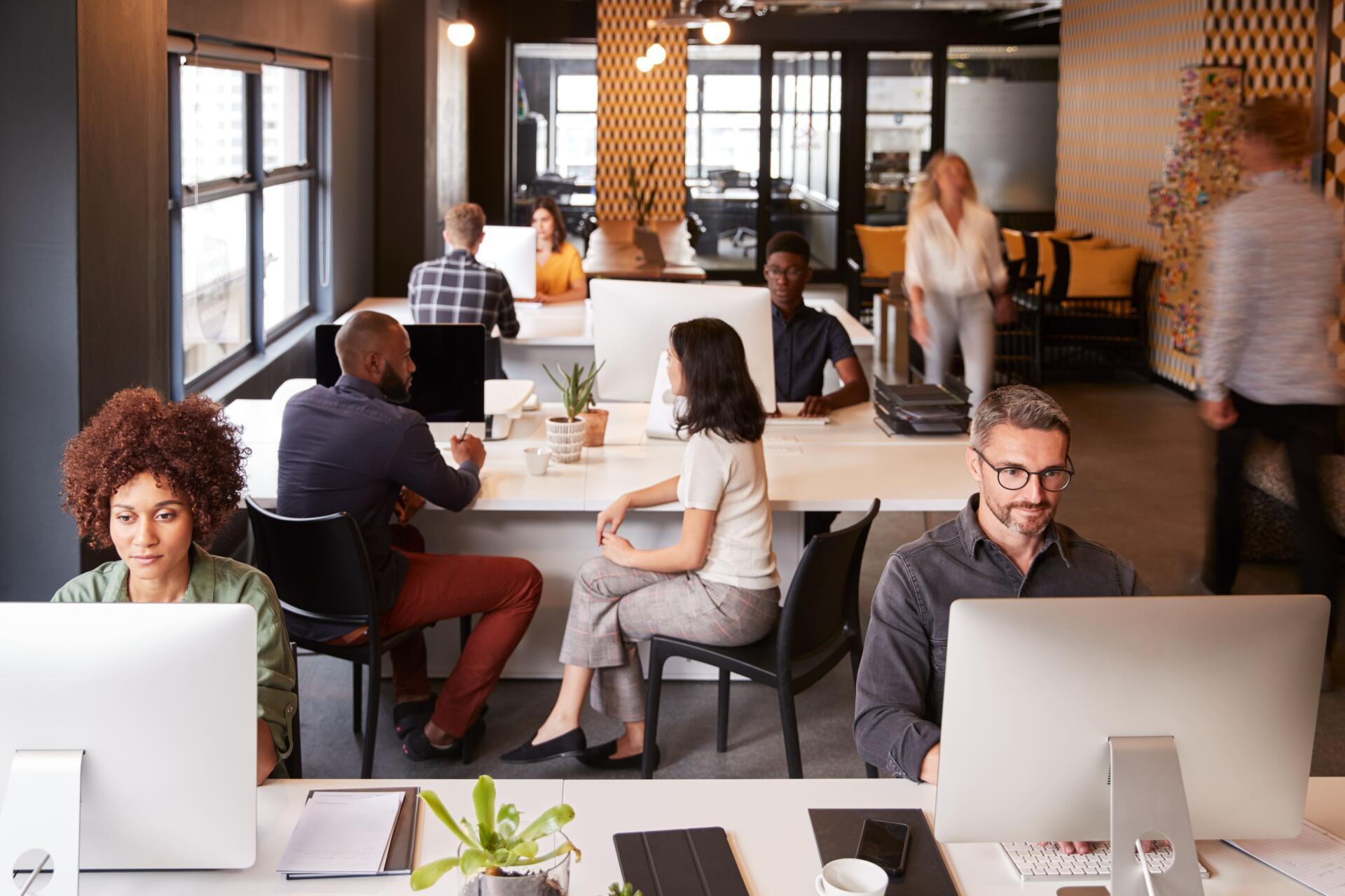 coworking-economico-europalace
